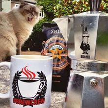 COFFEEUFEEL - Monday's call for nothing but Havana's finest XBLEND!! 📷 j_pain + 🐈 know what's up! #coffeeufeel #brewcrew